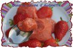 sorbet-fraise-rhubarbe-2.jpg