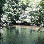 Carte postale : moment sympa à la rivière…