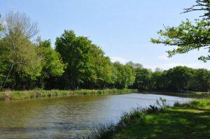 étang des Gatz à Souesmes