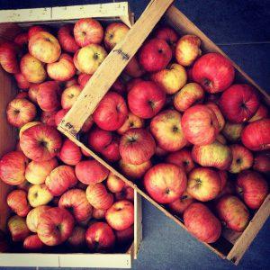 Feuilleté simplissime pommes, rhubarbe et miettes de sp&éculoos