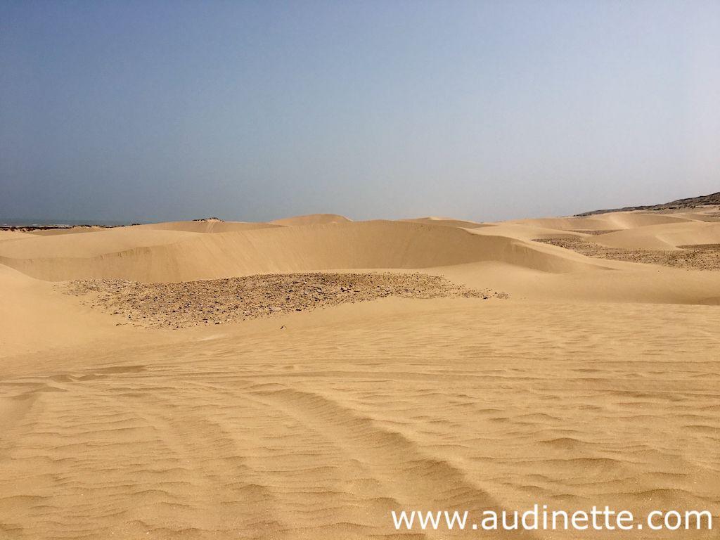 Des idées d'activités à Essaouira